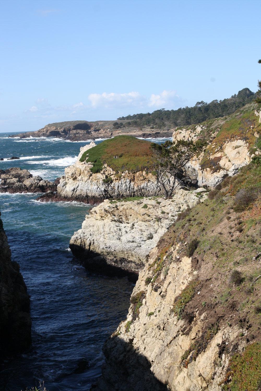 California6.jpg
