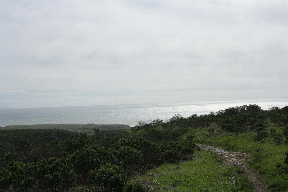 california17.jpg