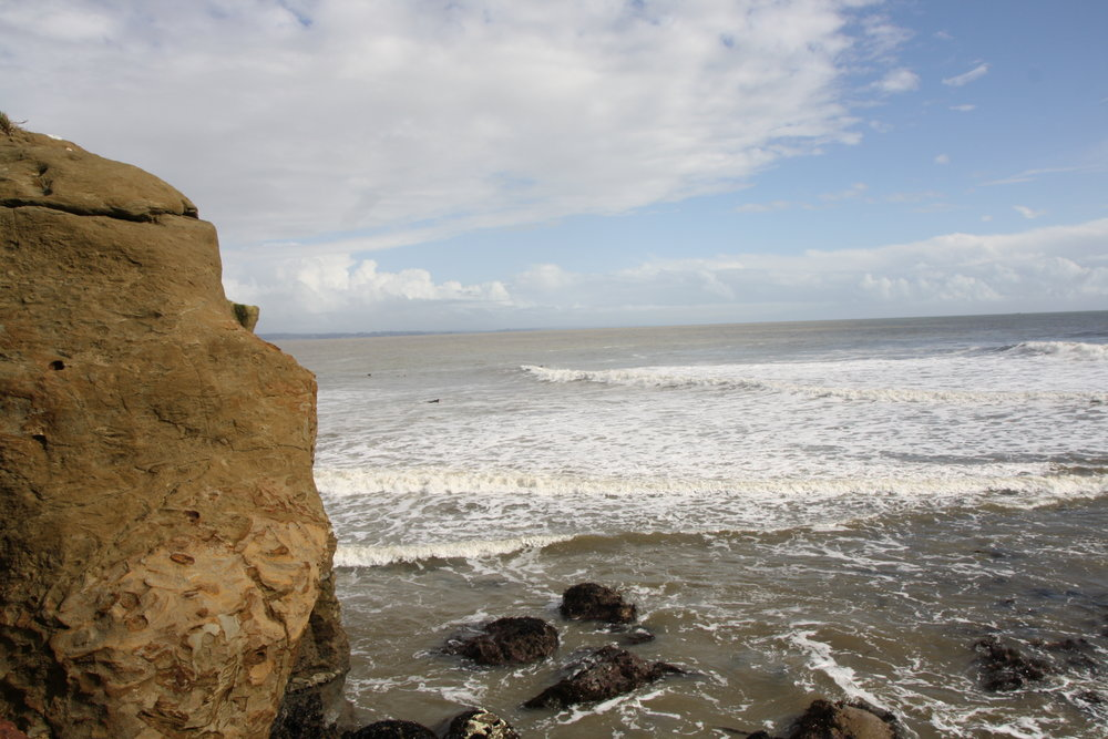 california29.jpg
