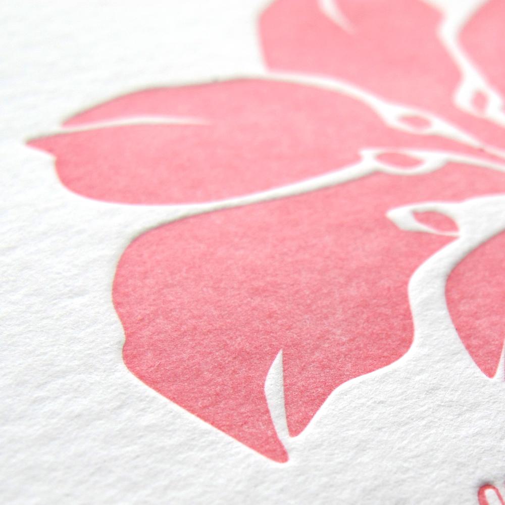 stationery_hibiscus_2.jpg