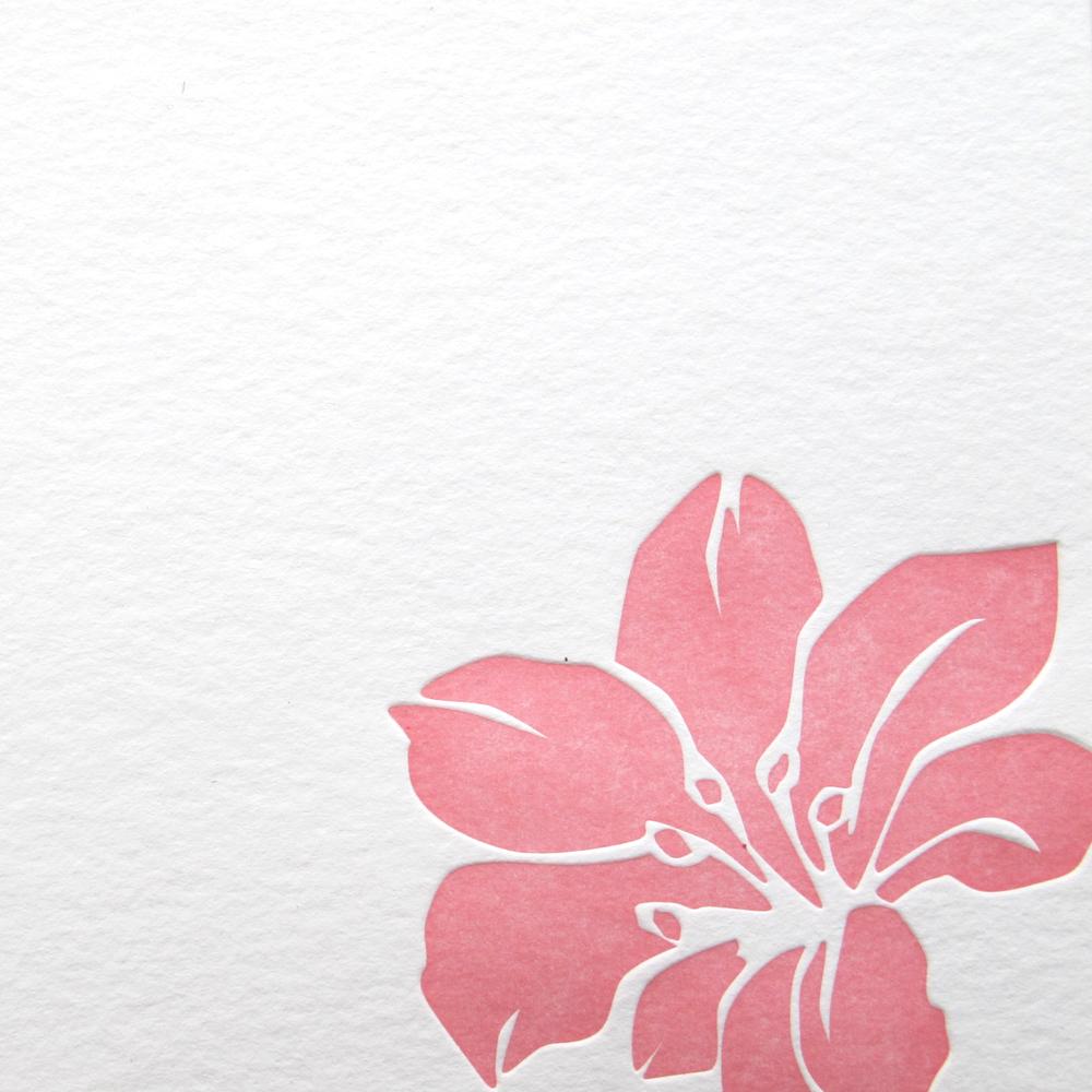 stationery_hibiscus_3.jpg