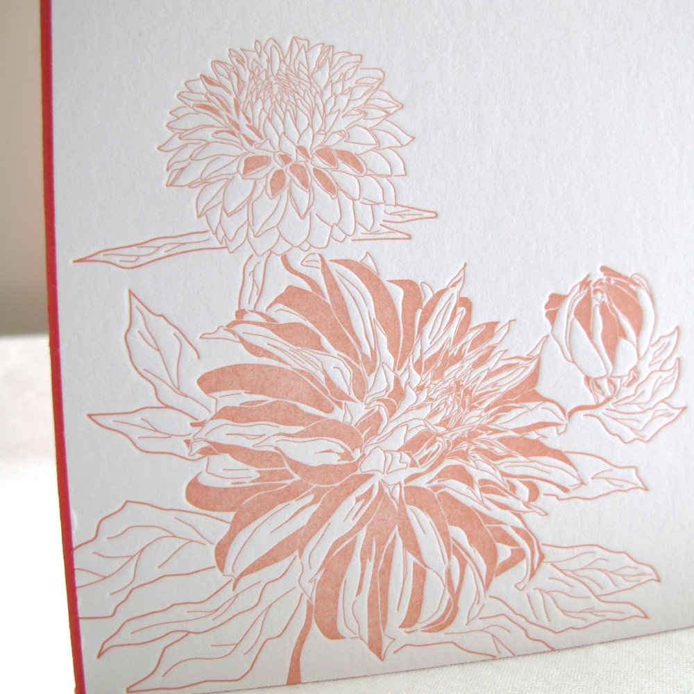 chrysanthemum_2.jpg