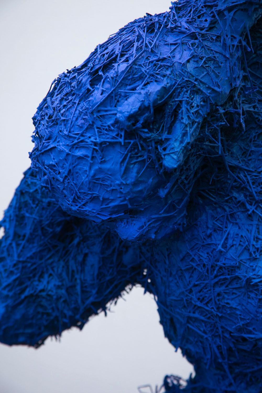 Emocion Azul detail