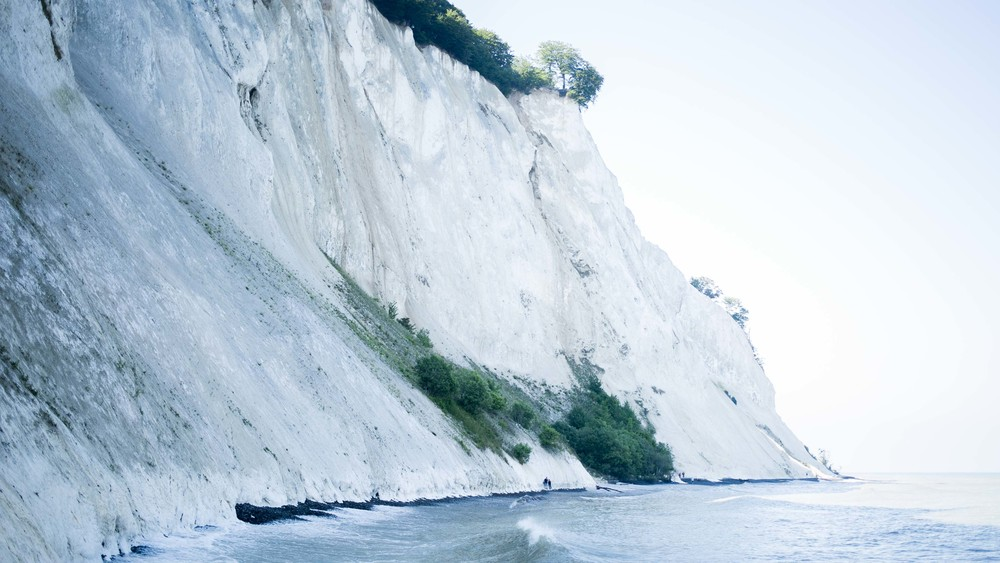 White chalk cliffs in the Møns Klint region.