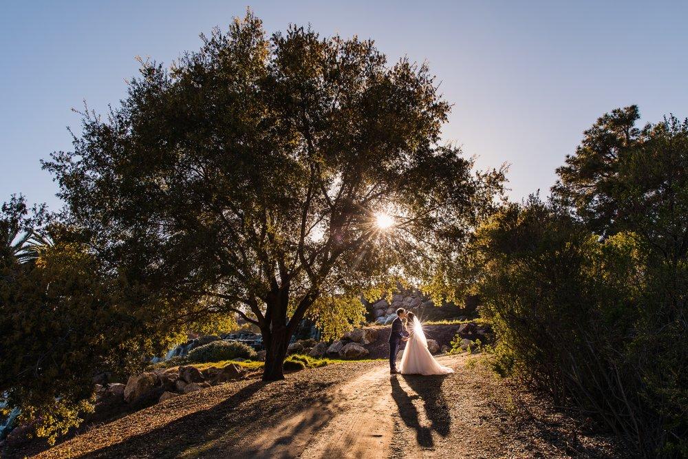 0541-WA-Silver-Creek-Valley-Country-Club-San-Jose-Wedding-Photography-small.jpg