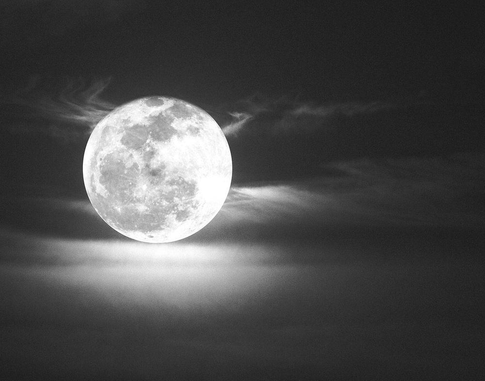 """""""La Luna Belle"""""""