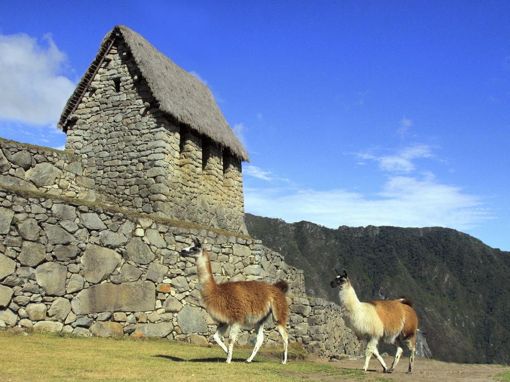"""""""Machu Picchu"""" - Peru"""