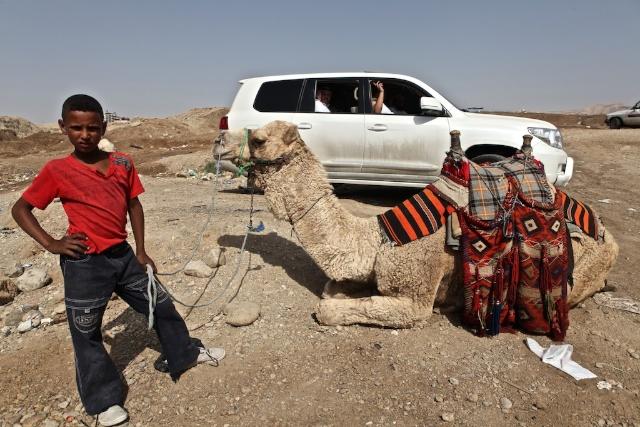 Bedouin Kid and His Camel, Dead Sea Valley, Jordan