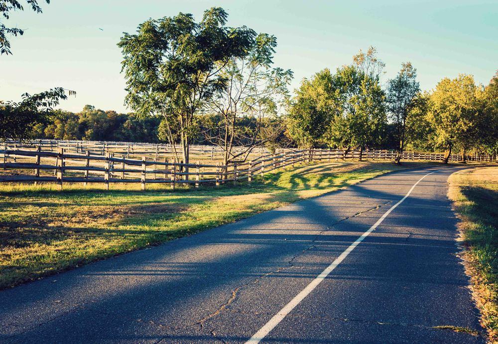 caumset-road-fall-web.jpg