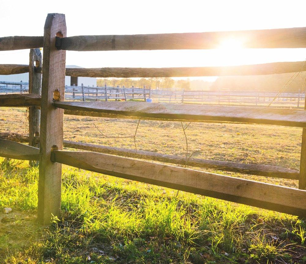 stables-caumset-flare-web.jpg