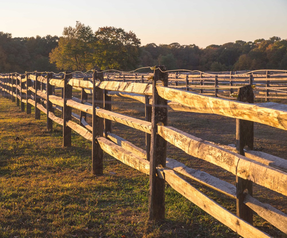 stables-fence-vintage-web.jpg