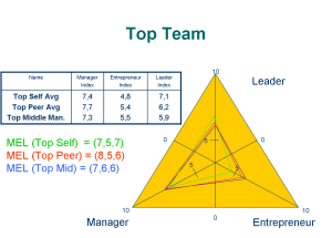 MEL – Index Top Team