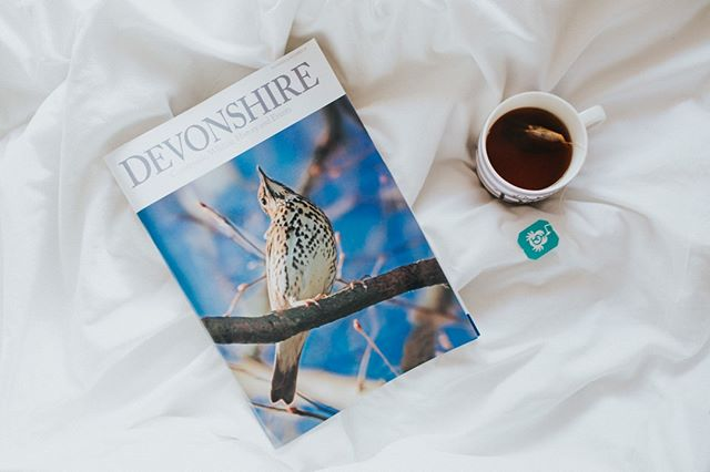 The weekends' dreary weather was the perfect excuse to stay tucked up in bed with a cup of Earl Grey and the latest issue of @devonshiremagazine . What are your current go-to reads? . . . . #devonshiretea #devon #tealovers #teabreak #earlgrey #devonshiremagazine #winter