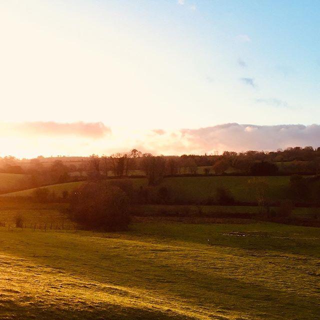 Thursday's morning light ☀️ . . . #devonshiretea #dartmoor #sunrise #timefortea #tealovers