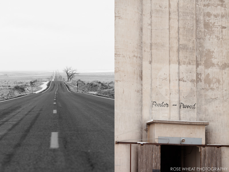 11. Kansas_Highway_Rose_Wheat_Photography_Emma_Wheatley.jpg