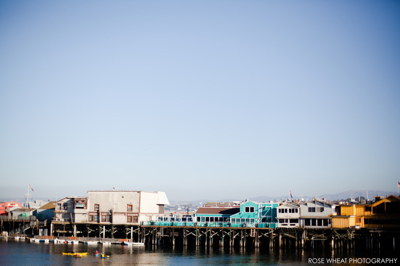 26. Monterey_Fisherman's_Wharf_Rose_Wheat_Photography_Emma_Wheatley.jpg