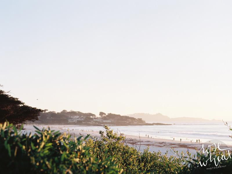 11. Carmel_beach_mamiya_645_pro_tl_kodak_portra_400.jpg