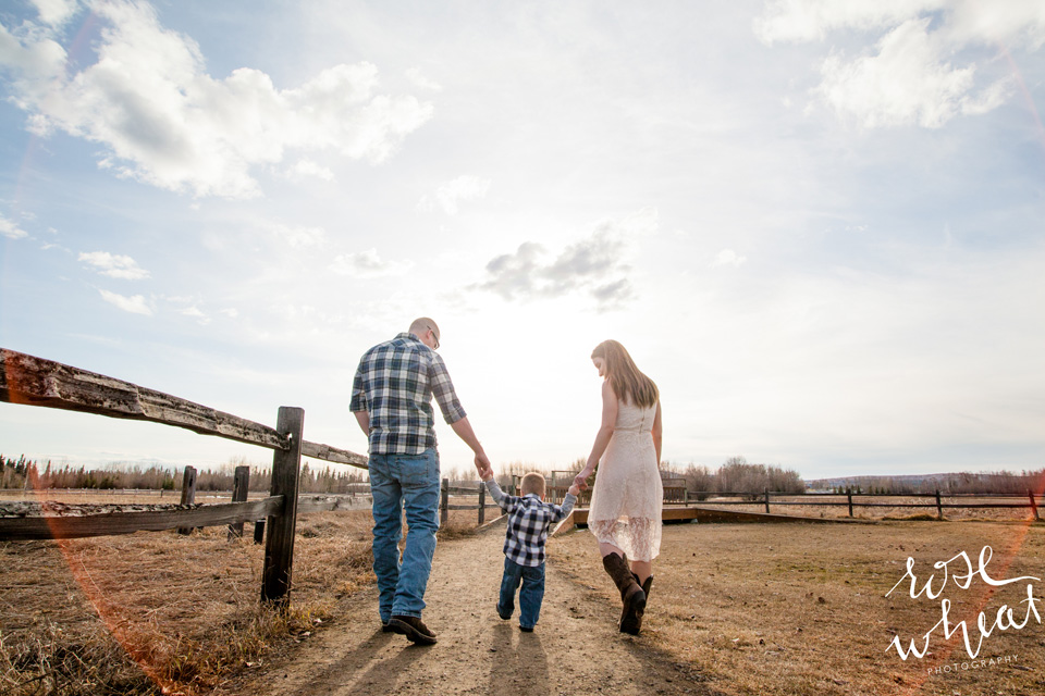 11. D_Creamer's_Field_Fairbanks_Family_Rose_Wheat_Photography-1.jpg