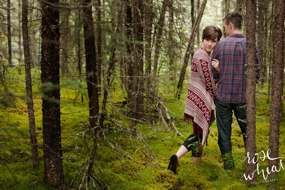 15. Chena_Hot_Springs_Road_Fairbanks_Alaska_rose_Wheat_Photography.jpg