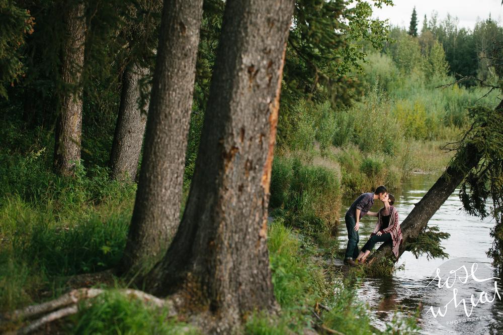 16. Chena_Hot_Springs_Road_Fairbanks_Alaska_rose_Wheat_Photography.jpg-2.jpg