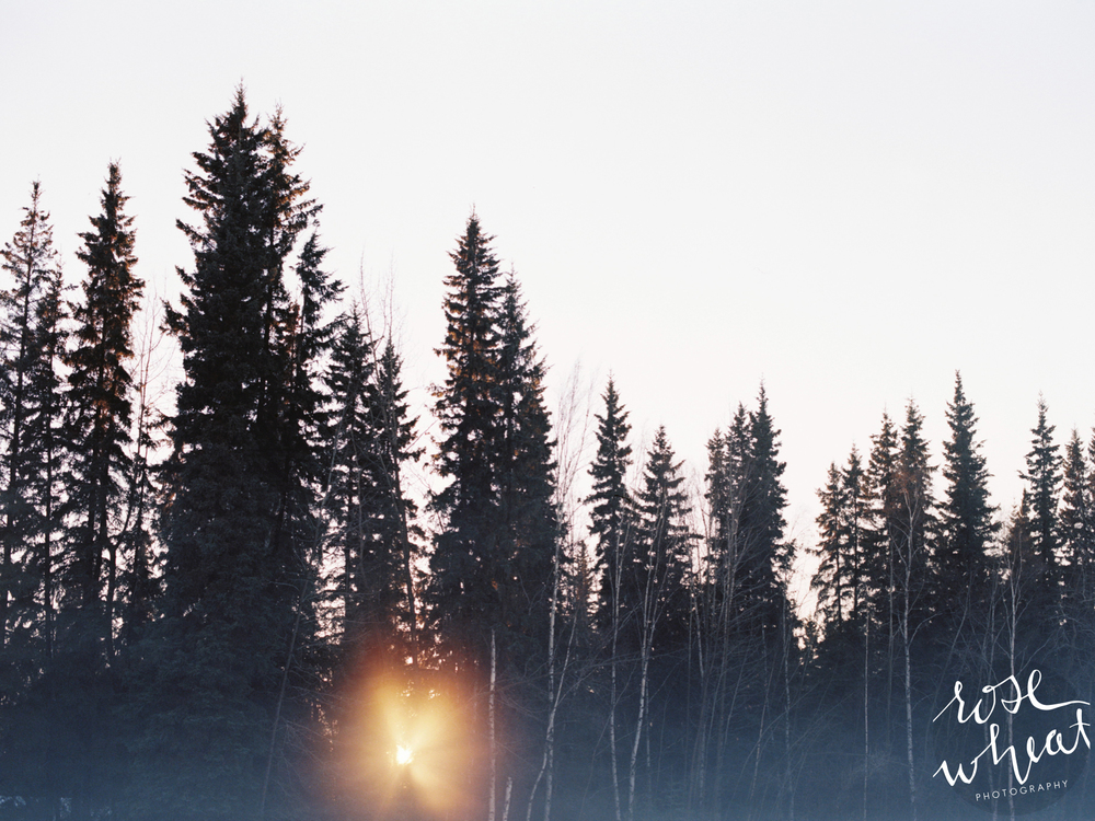 01. Fairbanks_Alaska_Ice_Fog_Kodak_Portra_400_Mamiya_Pro_TL.jpg