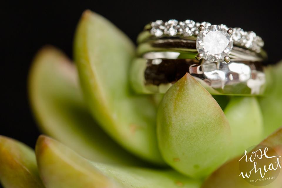 13. FJELL_BLIKK_HYTTE_Wedding_Fairbanks_AK_Rose_Wheat_Photography.jpg-1.jpg-01.jpg