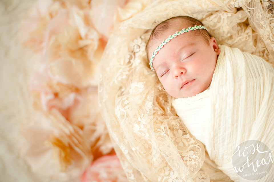 11.-Fairbanks_AK_Newborn_Photographer-3.png