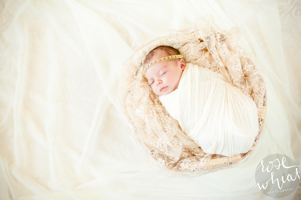 13.-Fairbanks_AK_Newborn_Photographer-2-1.png