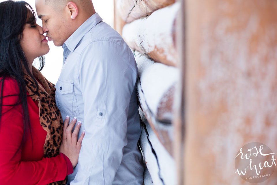 003. Creamers_Field_Fairbanks_AK_Engagement_Session_Winter_Outdoors.jpg