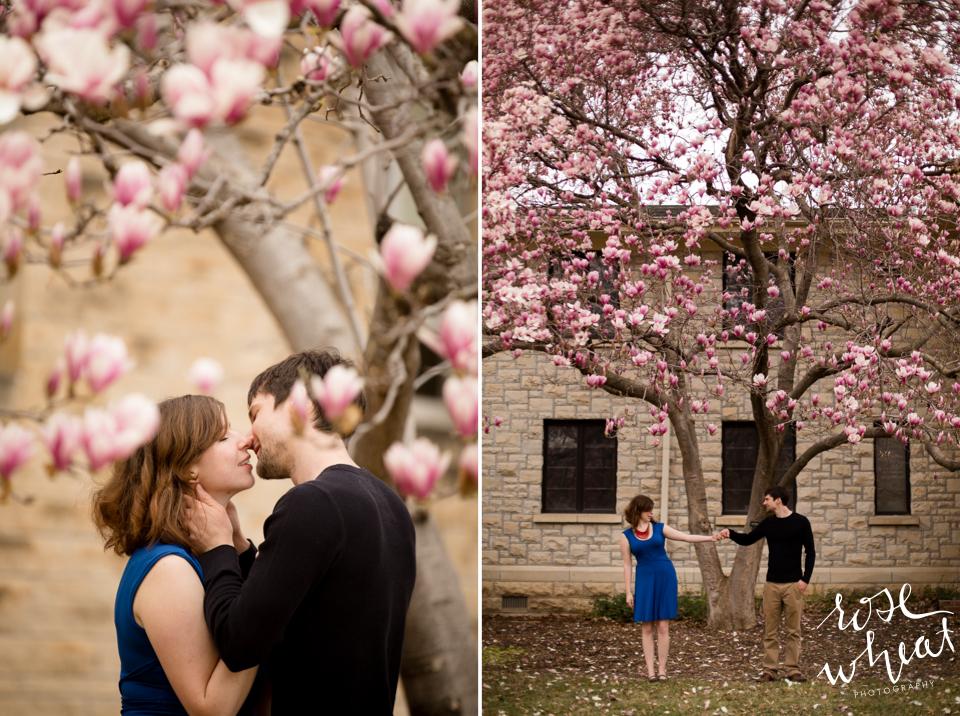001. SPRING_MAGNOLIA_Anniversary_Kansas_State_University.jpg