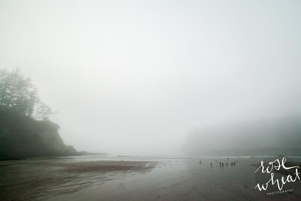 010. Sunset_Bay_Charleston_Oregon_Fog_Evening-2.jpg