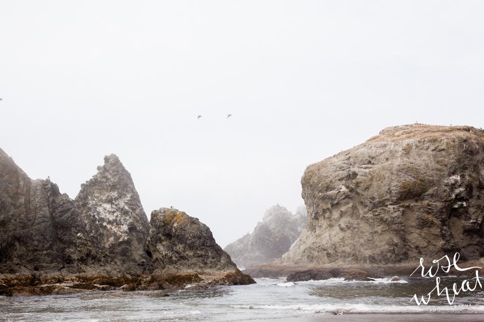 013. Bandon_Oregon_Shore_Rock_Formations_Foggy-3.jpg