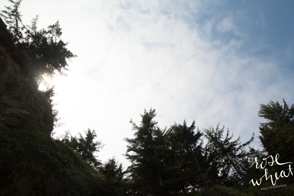 018. Cape_Arago_Oregon_Shore_Acres_Estate_Cover-1.jpg