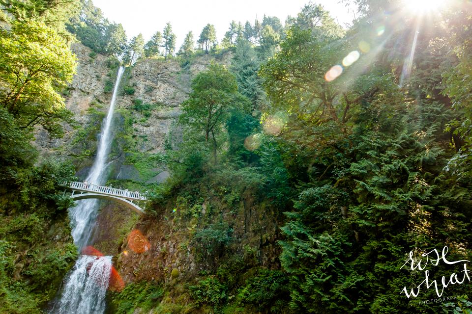 028. Mulnomah_Falls_Portland_Oregon_Tourist_Crowded_August-2.jpg