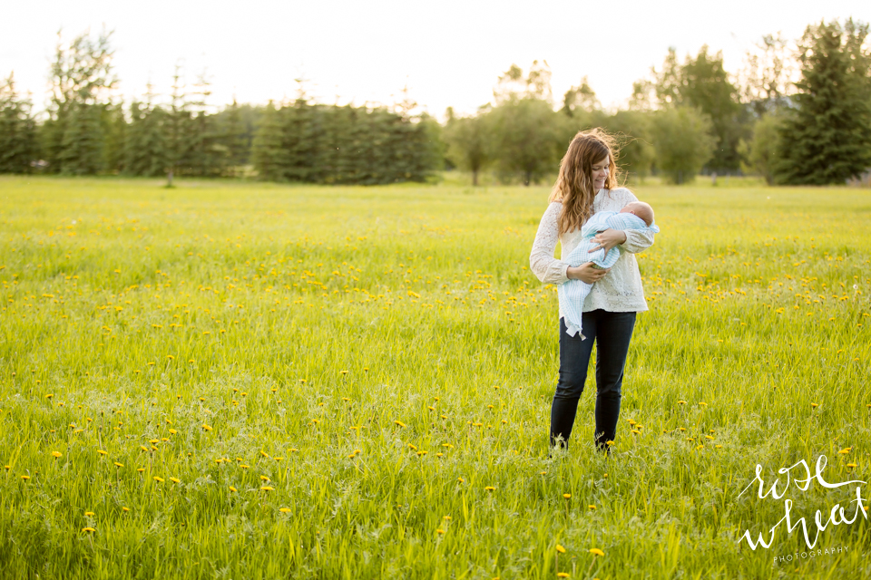 003. Gentle_Mommy_And_Me_Session_Creamers_Field-4.jpg