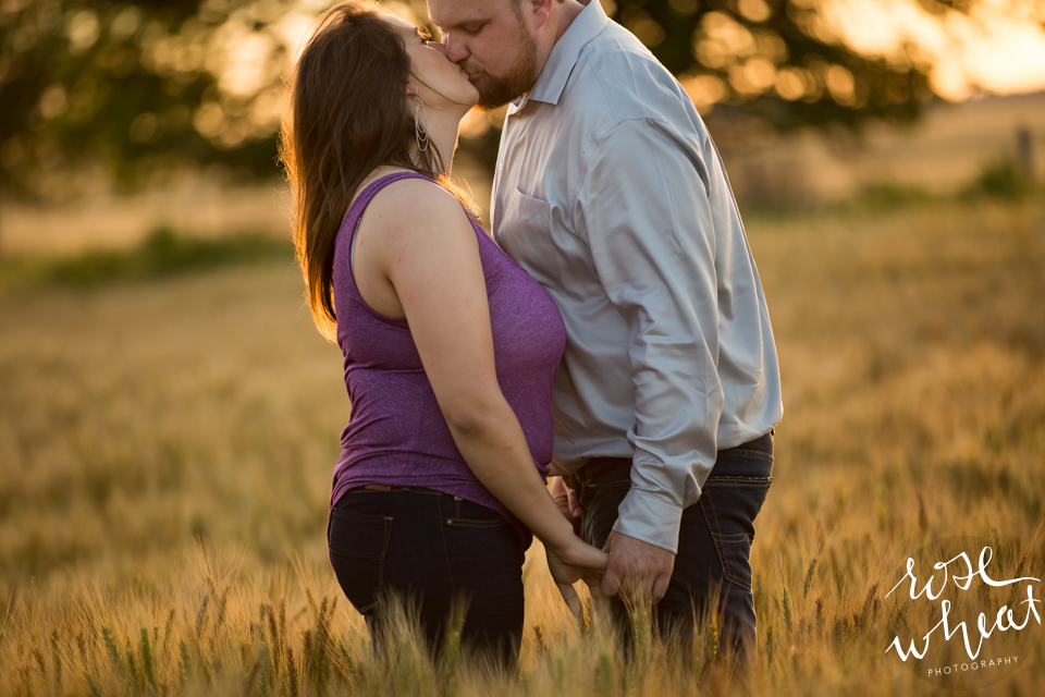 006. Kansas_Wheat_Field_Country_Engagement_Love-2.jpg