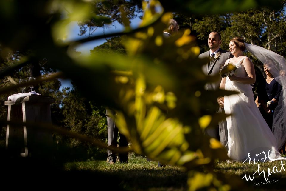 014.  CARMEL_CA_DESTINATION_Wedding_Photographer_Hacienda_VRBO_INtimate-5.jpg