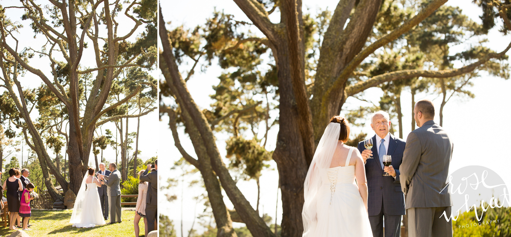 015.  CARMEL_CA_DESTINATION_Wedding_Photographer_Hacienda_Wine_Ceremony.jpg