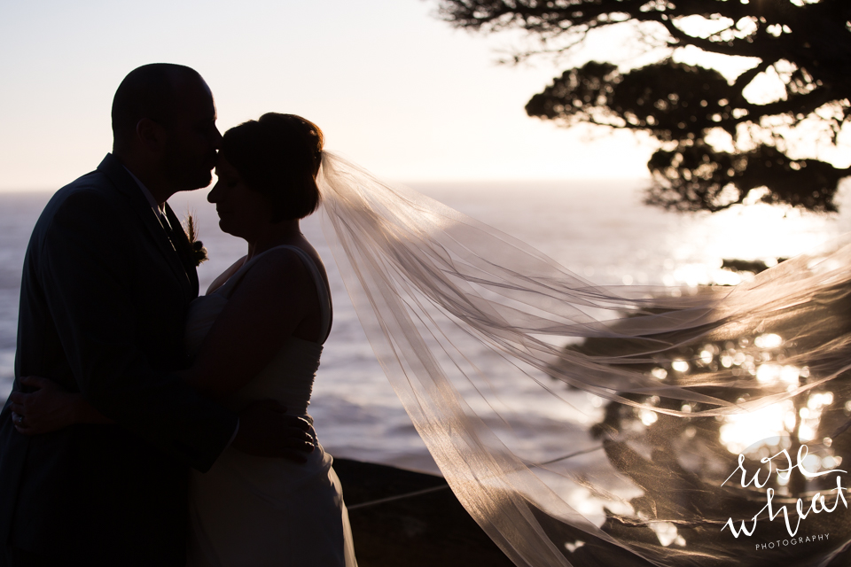017. Point_Lobos_California_Destination_Wedding_Sunset-5.jpg