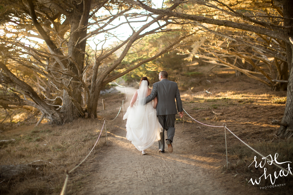 017. Point_Lobos_California_Destination_Wedding_Sunset-4.jpg