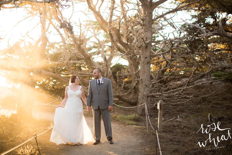017. Point_Lobos_California_Destination_Wedding_Sunset-7.jpg