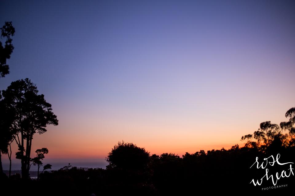 019. CARMEL_CA_DESTINATION_Wedding_Photographer_Hacienda_Sunset_Silhouette.jpg