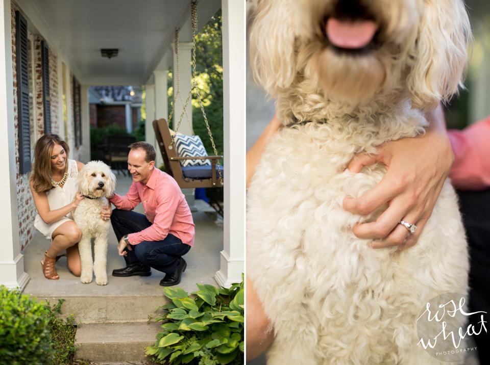 004. Dog_Engagement_Pose_Golden_Doodle.jpg