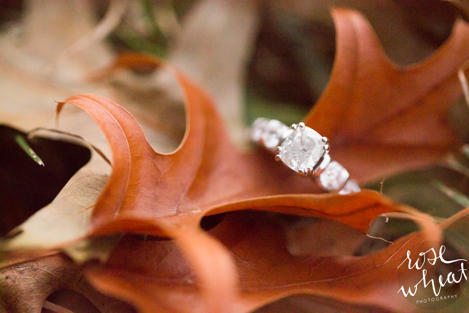 013. Loose_Park_Engagement_Ring_Leaves_Fall.jpg