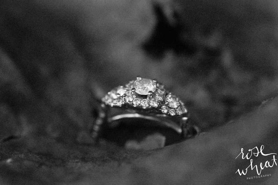 009. Macro_ring_Photo_Black_White_Canon_100mm.jpg