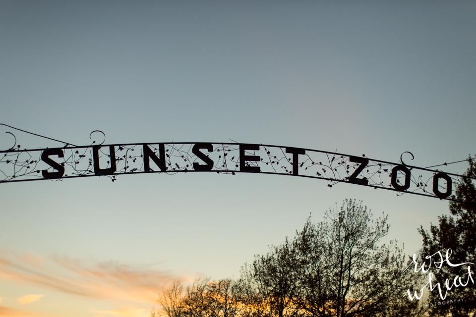 023. Sunset_Zoo_Manhattan_K.jpg