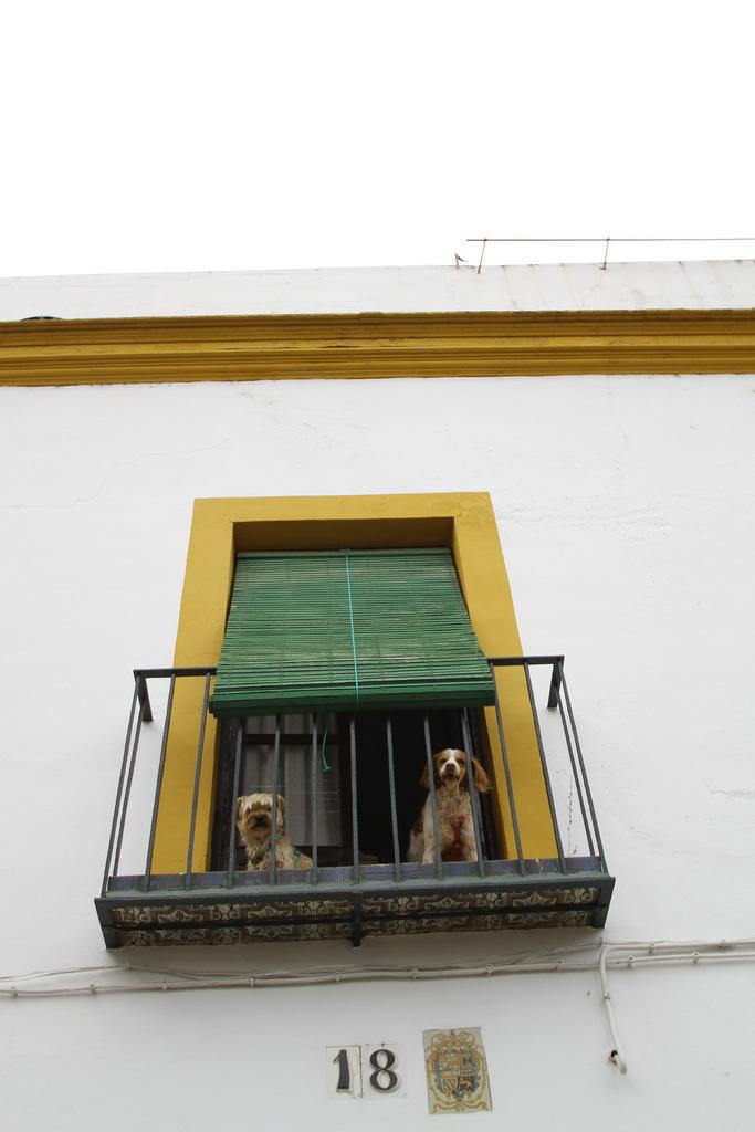 Sevilla, Spain - Image ©Alli Mills