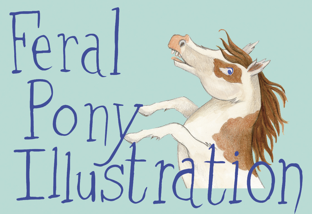 feral pony art and illustration