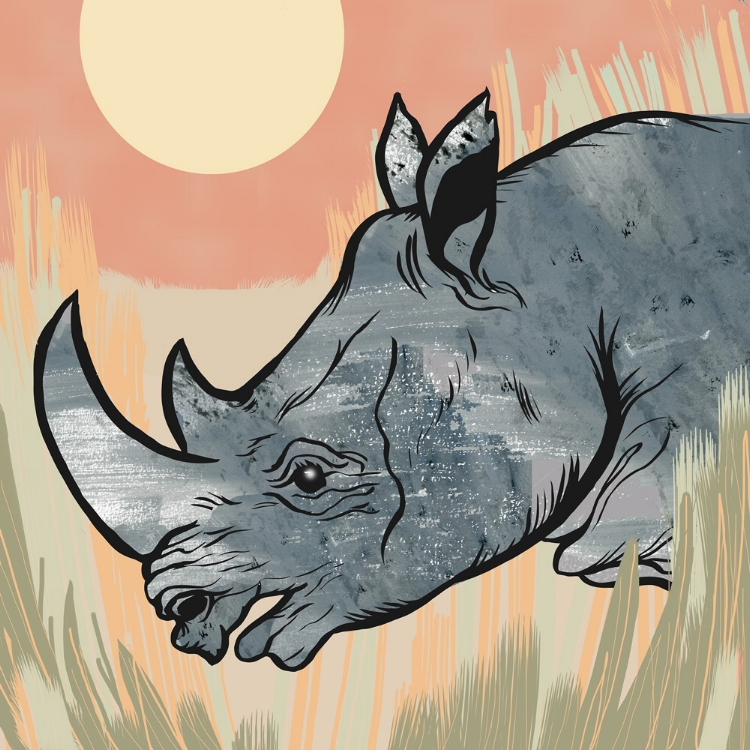 Protecting wildlife is a cause near and dear to my heart.  The illustrations below created for World Rhino Day,  Save the Vaquita Day (vaquitas are the world's smallest porpoise) and to show support for the Endangered Species Act.  Except for illustrations created for The Center for Biological Diversity's first Endangered Species Condom project the following work is all from personal projects. In 2009 I co-founded the Endangered Species Print Project which has helped to raise around $15,000 for wildlife conservation.