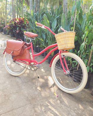 bike ocampo.jpg